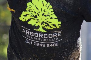Arborcore tree services with Google AdWords & SEO from Mint.